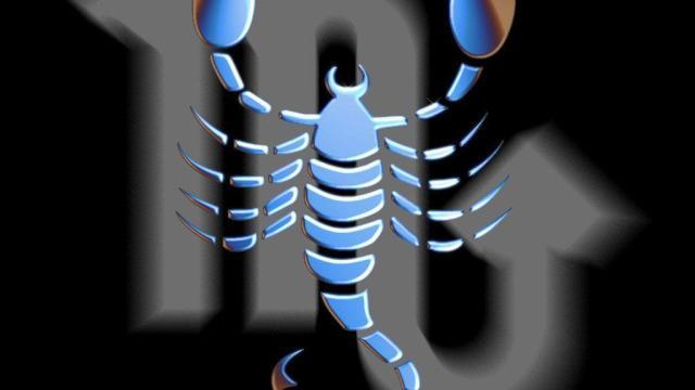 skorpije u ljubavi i poslu